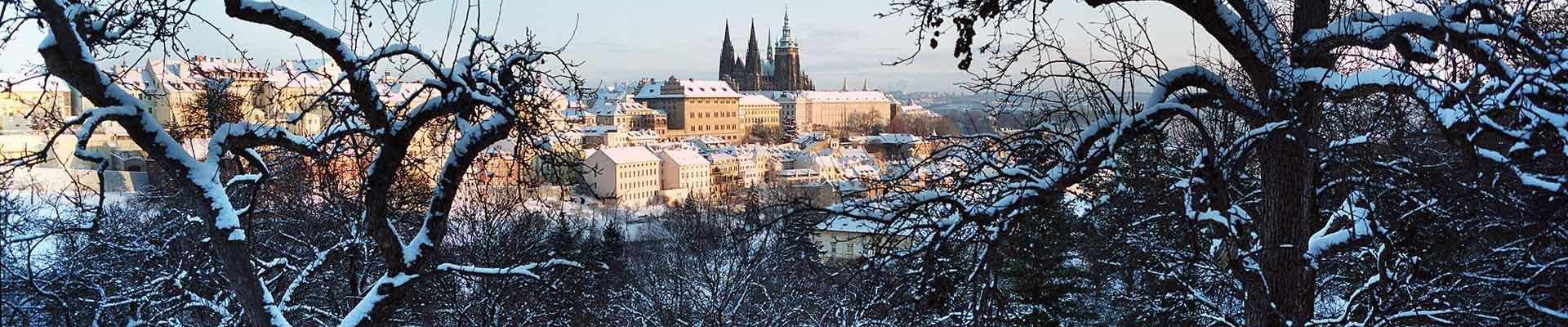Single reizen Praag