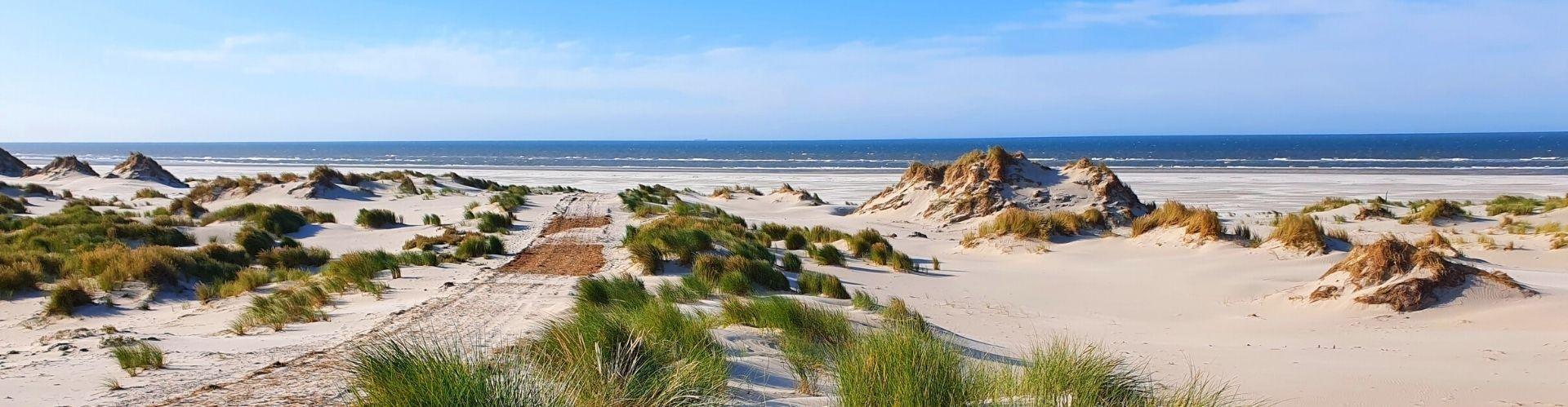 Single reizen Nederland
